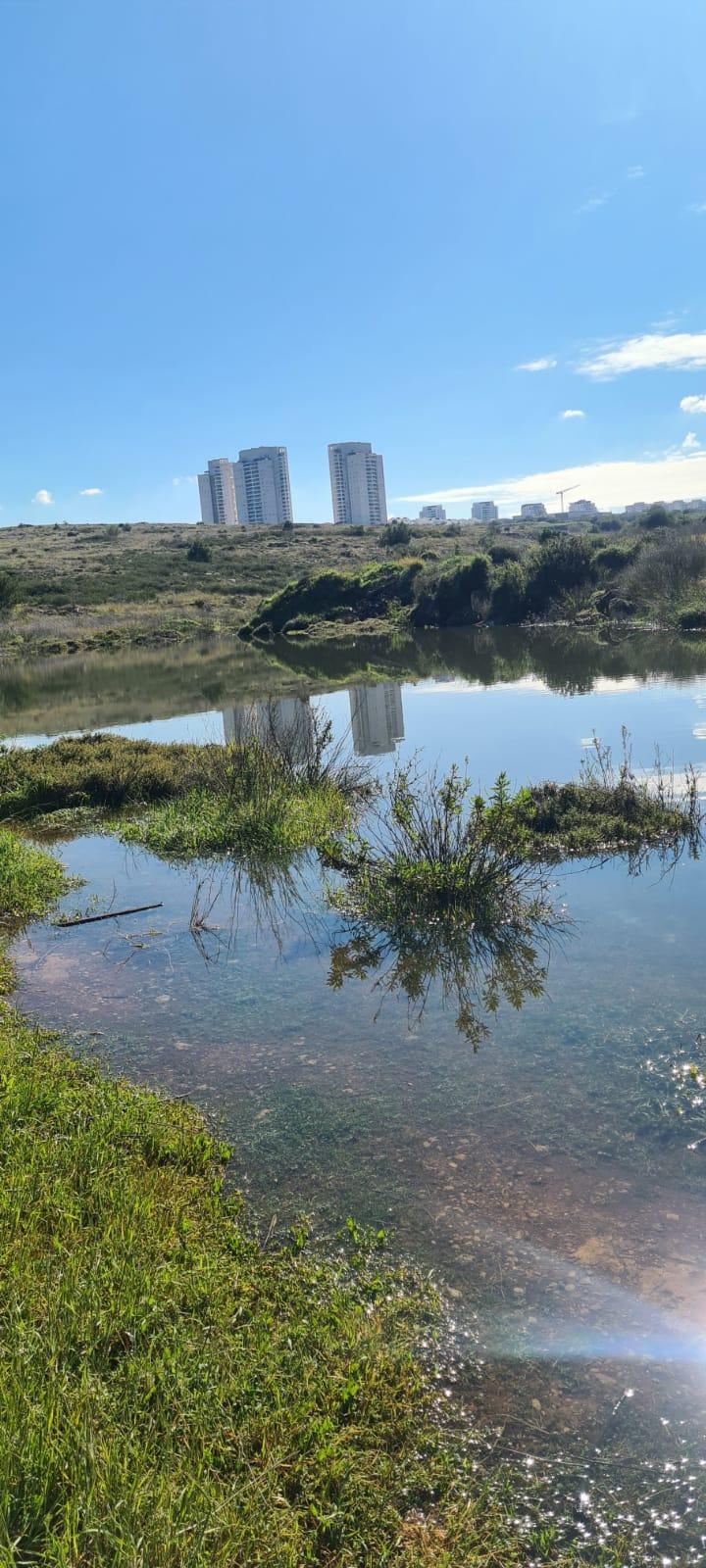 האגם הנסתר במודיעין