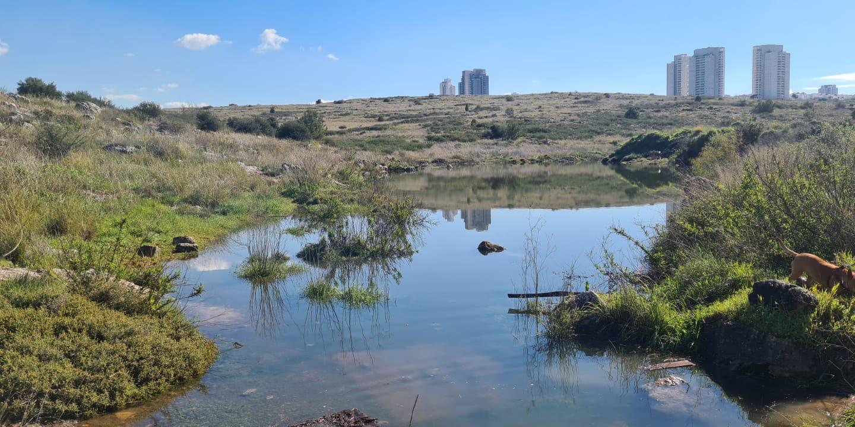 האגם הנעלם המודיעין